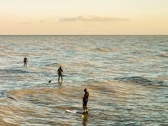 Sup surfing (Mauro Taraborelli) Tags: winter sea italy macro 50mm harbor europe surf afternoon paddle sup marche senigallia ancona goldlight canonfd micro43 senigalliaharbor panasonicdmcg3