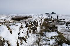 Tor in sight -14.jpg (screwdriver222) Tags: winter snow nature girl grass wall landscape countryside nationalpark rocks pentax stones south devon granite moors tor moor dartmoor k5 bridleway moorland princetown tamron2875f28xrdi hessary