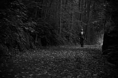 like James (skoeber) Tags: people bw white black contrast forest person blackwhite nikon tamron kontrast wald reportage d90 nikond90
