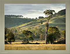 Kooralgin bush scene 1 (agphoto100) Tags: sunset tree field grass clouds photoshop bush flickr fuji framed hills frame s5500 hdr fujis5500 yarraman cooyar redynamix kooralgin