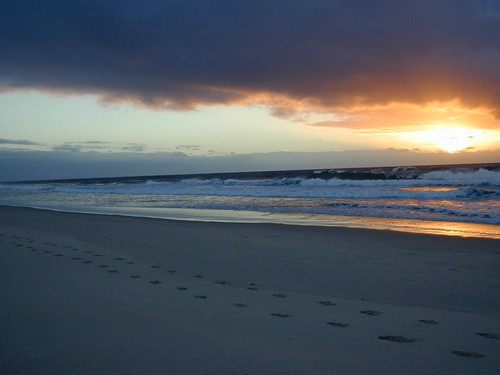 Beach Gold Coast - 38