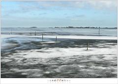 Kuiend ijs (1D134541) (nandOOnline) Tags: winter berg nederland natuur vuurtoren marken landschap noordholland ijselmeer ijs vorst markermeer vriezen ijsschotsen kruiendijs dooien paardvanmarken