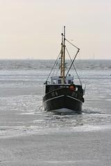 IMG_0950 (tinehendriks) Tags: friesland stavoren 2012 kruiendijs