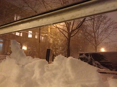 (prestel.pups) Tags: nemo blizzard brookline coolidgecorner photostream winterstormnemo
