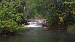 Brook Feeding Back Water (James P. Mann) Tags: new river salmon brunswick brook