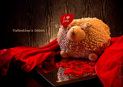 Valentine's Dh ! (Fauve - Photographie) Tags: light red black france cute love rouge mirror soft noir sheep heart lumire coeur coton plush cotton amour passion romantic iloveyou miroir mouton tender valentinesday velour tendre mignon peluche saintvalentin myfunnyvalentine vende romantique ellafitzgerald doux jetaime paysdelaloire talmontsainthilaire valentinesdh