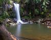 Curtis Falls. Mount Tamborine, Gold Coast (sandynfowler) Tags: longexposure plant water landscape waterfall log rainforest rocks australia powershot goldcoast hinterland mounttamborine curtisfalls g15 flickraward5