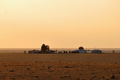 Silverton - Ranch in Gold Sunlight (Drriss & Marrionn) Tags: ranch travel usa sunlight texas silverton northamerica plains silvertontx llanoestacado panhandleplains