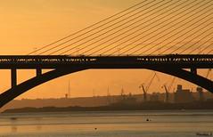 Architecture (Nico_bzh29) Tags: light sunset orange sun reflection colors architecture night soleil lumire low coucher bretagne reflet brest pont passage couleur finistre iroise daoulas plougastel