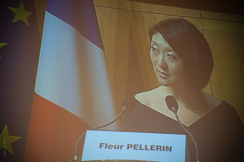 """Fleur Pellerin - Séminaire """"Quelles nouvelles politiques pour les Espaces publics numériques (EPN) ?"""""""