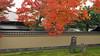黄梅院 Ōbai-in (ɑlɑstɑr ó clɑonɑ́ın) Tags: autumn japan temple maple kyoto momiji 京都 日本 紅葉 japon giappone japón daitokuji 大徳寺 oubaiin 黄梅院 obaiin ōbaiin