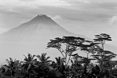 The beating heart of Java (NomadImagesPhotography) Tags: trees blackandwhite mountain monochrome clouds rural indonesia landscape volcano countryside java moody atmosphere scene tropical gunung jawa merapi mountainous activevolcano jawatengah mountmerapi canoneos50d gunungmerapi canon70200mmf4lislens