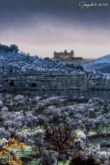 El castillo del Marqus (Gonzalo y Ana Mara) Tags: castillo lacalahorra canonef70200mmf4lisusm almendrosenflor canoneos5dmarkiii