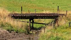 Nowhere (Tones Corner) Tags: railbridge nzscene nzscenery nzrural nzrailway
