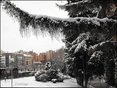 Burgos nevado!!! (Lumiago) Tags: espaa spain nieve paisaje burgos castillaylen befunky mygearandme rememberthatmomentlevel1
