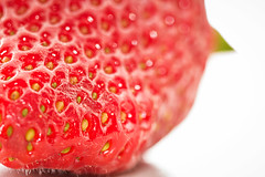 Erdbeerfieber! 3/4 (Skley) Tags: macro closeup fruit photo strawberry foto fotografie bokeh creative picture strawberries commons fresh depthoffield cc bild makro nahaufnahme erdbeere schrfentiefe erdbeeren frisch lecker obst kreativ gesund fruchtig schmackhaft skley