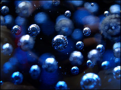 Day 73 (kostolany244) Tags: life blue macro glass germany march europe dof bubbles day73 geo:country=germany olympuse510 kostolany244 3652013 365the2013edition life2013 1432013