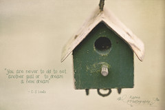 Dreams (k4wea) Tags: house wooden quote edited tiny blogged beyondbeyond texturetuesday kktexturetuesday beyondlayers notpleasedwiththisonejustwishihadspentmoretimeonit