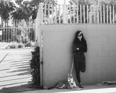 Pentax 110 George 1 (▓▓▒▒░░) Tags: auto california camera dog white black west classic film wall vintage coast lomo lomography pentax walk 110 malibu retro socal orca mulholland cartridge lean