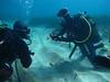 Aquanature sortie technique N2-N3 le Petit Mejean_17