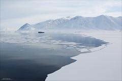 Bellsund, Svalbard (Hkon Kjllmoen, Norway) Tags: ocean white mountains cold ice water beautiful norway polarbear land 2013 kvsvalbard