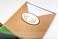 B3M_0407 (mediendesignmoser) Tags: papier geschenk stampinup basteln 2016 jger geschenkbox brigittebaiermoser explosionsbox