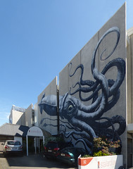 Park at Your Own Risk (Steve Taylor (Photography)) Tags: blue newzealand sky orange streetart art car wall giant concrete grey graffiti mural perspective nelson squid nz octopus vehicle southisland 92 roa parkatyourownrisk stallardlaw