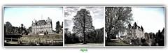 CHTEAU & PARC DE LA PUISAYE  VERNEUIL-SUR-AVRE (rgisa) Tags: chteau parc park puisaye castle eure verneuil verneuilsuravre avre tree arbre