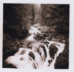 Opal Creek 16, Opal Creek Wilderness 2016 (Sara J. Lynch) Tags: sara j lynch opal creek wilderness black white holga 120n film water rocks waterfall