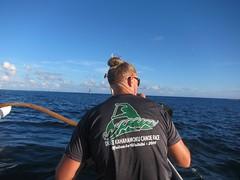 IMG_6809 (nautical2k) Tags: waikikibeachboys paddling outrigger canoe diamondhead honolulu oahu