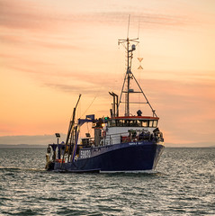 Bringing in the morning catch (lizcaldwell72) Tags: fishingboat hawkesbay sunrise napier water sky newzealand portahuriri light