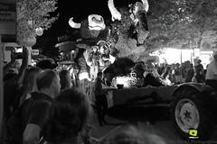 Corso-Fleuri-Selestat-2016-82.jpg (valdu67photographie) Tags: alsace corsofleuri selestat 2016 nuit international basrhin expositions fanabriques fanabriques2016 lego rosheim visite