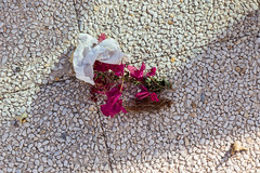 Project 365 - Eyes on the ground (Pascal Heymans) Tags: alicante espagne espaa fotokunst orihuelacosa pad pictureaday project365 spain spanien spanje torrevieja contemporarylandscape eyesontheground grond photo photography sociallandscape urban urbanlandscape es canoneos6d pascalheymans