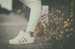 Con los pies en el suelo (Graella) Tags: zapatos shoes deportivas bambas bohek desenfoque people gente piernas feet pies peus calzado flores flowers parque parc park vintage girl chica