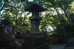 SDQ_3375lr (yoshitoshi ABe) Tags: 20160904 吉祥寺 井の頭公園 sdquattro sigma15mmf28exdgdiagonalfisheye