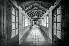 Das alte Sanatorium (thewhitewolf72) Tags: sanatorium lostplace galerie collage gedicht verlassen vergangenheit riss perspektive fluchtpunkt tr gang wow