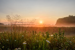 A Hazy Morning at Shiawassee National Wildlife Refuge (Jacqueline C. Verdun) Tags: snwr verdun nikon d810 michigan hazy sunrise peach foliage water sky