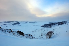 _MG_7258 (c0466art) Tags: 2015 chinese inner mogonlia grassland winter season trip travel early morning sunrise momemt cloudy blue tone mountain white snow world cold weather beautiful landscape scenery trees light canon 1dx c0466art