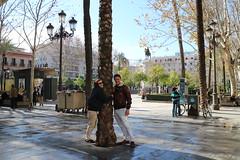 Sevilla (4) (crgmry) Tags: sevilla seville wintersun city espana spain historic historiccity