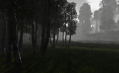 """Just another hazy dawn with a scent of sorrow and a shimmer of hope."" (LoneSolitarian) Tags: second life secondlife sl virtual dark light shadow art firestorm gimp photography windlight photo sim 3d nature landscape scenery beauty romance serene forest trees mirromere magic hope dawn mist"