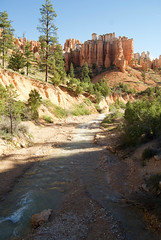 Water Canyon (nick.amoscato) Tags: west03 west03bryce mossy cave trail bryce national park utah