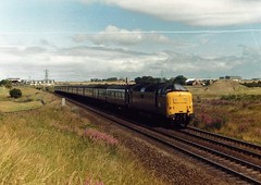 55010 heading for Newcastle past Little Benton in the 1980s (colin9007) Tags: english electric type 5 class 55 napier deltic