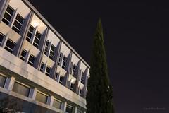 Faculdade de Direito de Lisboa (Rita Ricardo) Tags: arquitecture night building lines photography lisbon arquitectura longexposure