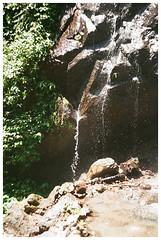 Pahuma (Patrick J. Negwer) Tags: ecuador pichincha pintag pahuma reserva cascada rio agua verde sol cielo perro perros gusano plantas naturaleza