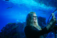 Den Bl Planet (Thomas Ohlsson Photography) Tags: akvarie aquarium copenhagen denblplanet denmark lumixg20mmf17 olympusomdem5elite thomasohlssonphotography thomasohlssoncom kastrup capitalregionofdenmark