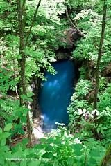 Blue Hole (Photography By: Jyon Hammer) Tags: karst sinkhole bluehole
