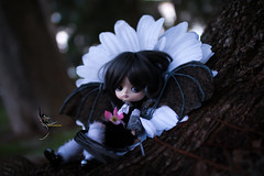 No Scared If You Come With Me (dreamdust2022) Tags: eris sweet cute charming happy playful tender loving hug kiss magical little young baby dragon girl dal doll sparrow dama mizar