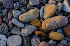 Pebble on the beach (frankmh) Tags: stone pebble beach hittarp skne sweden outdoor
