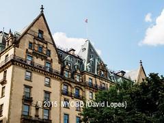 NYC Central Park 2014-8100404 (myobb (David Lopes)) Tags: calvertvaux centralpark em1 fredericklawolmsted manhattan nyc newyork newyorkcity omd olympus usa day green nature park summer