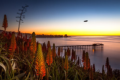 Life on Mars (Chimay Bleue) Tags: ocean california blue winter sunset red sky orange cliff plant landscape la pier succulent aloe twilight san village pacific zeppelin diego clear southern torch socal hour gradient blimp bloom metlife jolla scripps